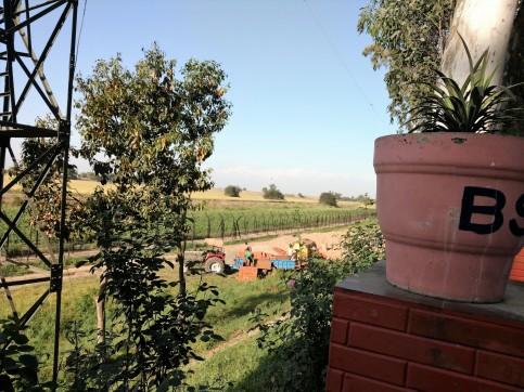 Dera Baba Nanak border conditin of peasants on border wire